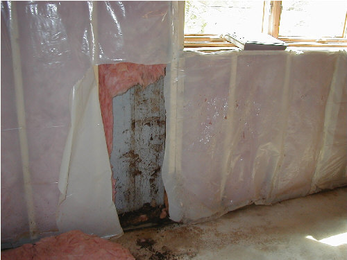 Drywall Moisture Barrier : Basement finishing drywall in basements mold boston