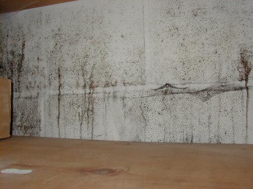 Basement Finishing Drywall In Basements Amp Mold Boston